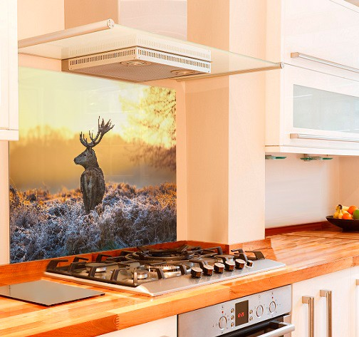 Majestic Deer Kitchen Glass Splashback