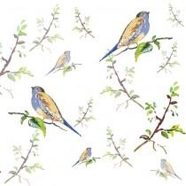 Bird and Branch sq diy kitchen glass splashback