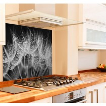 Night Dandelion Kitchen Glass Splashback