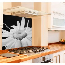 Dark Night Daisy Kitchen Glass Splashback