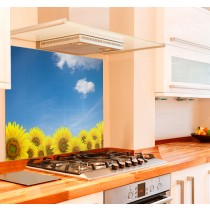 Sunflowers Kitchen Glass Splashback
